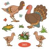 Комплект цвета милых животноводческих ферм и объектов, индюка семьи вектора иллюстрация вектора