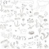 Комплект цветков doodle Стоковые Фото