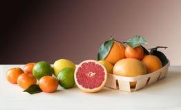 Комплект цитрусовых фруктов на белом деревянном столе стоковые изображения
