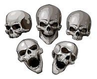 Комплект черепов иллюстрация вектора