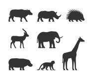 Комплект черноты вектора животных африканца силуэтов Стоковая Фотография RF