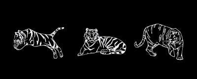 Комплект эмблемы тигра Стоковое фото RF