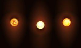 Комплект электрической лампочки реалистической иллюстрации вектора горящей Пустой шаблон для того чтобы конструировать знаки или  Стоковое Изображение