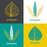 Комплект элемента дизайна логотипа вектора Перо и лист Стоковые Изображения RF