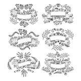 комплект элементов конструкции флористический Нарисовано вручную иллюстрация штока