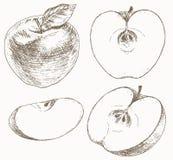 Комплект Яблока Стоковое Изображение