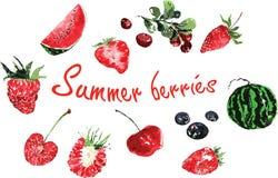 Комплект ягод лета покрашенных в акварели Стоковое Фото