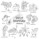 Комплект ягод сада Стоковое фото RF
