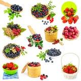 Комплект ягод Стоковое Изображение RF
