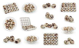 Комплект яичек триперсток изолированных на белизне Стоковая Фотография RF
