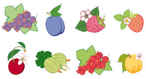Комплект яркого плодоовощ, абстрактный Стоковые Изображения RF