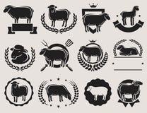 Комплект ярлыков овец и овечки вектор Стоковое Изображение