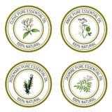 Комплект ярлыков эфирного масла: гвоздичное дерево; анисовка; розмариновое масло; жасмин иллюстрация штока