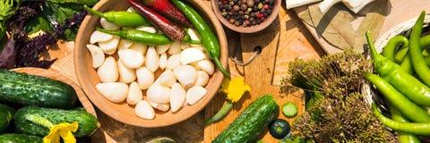 Комплект для домашний консервировать мариновать огурцов соль rosemary перца листьев трав чеснока cardamon залива spices ваниль стоковая фотография rf