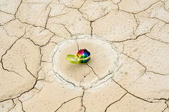 Комплект crayons в desolated земле Стоковые Изображения