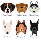 Комплект 6 dog& x27; голова s Плоский дизайн иллюстрация вектора