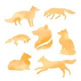 Комплект Fox силуэтов вектора акварели Стоковое Фото