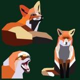 Комплект Fox Стоковые Изображения