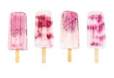 Комплект popsicles плодоовощ Стоковое Изображение