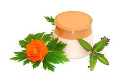 Комплект sprig опарника естественный cream изолированный на белой предпосылке Femini Стоковое Изображение RF