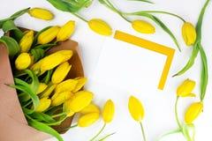 Конверт и желтые тюльпаны на белой предпосылке, насмешливой вверх, плоско кладут с космосом экземпляра Международное приветствие  стоковое изображение rf