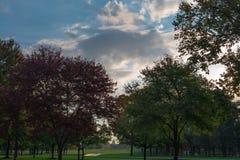 Конгресс через подсвеченные деревья Стоковые Изображения
