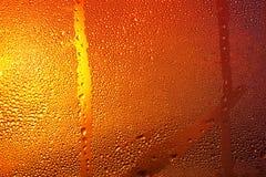 Конденсация на пивной бутылке стоковое фото rf