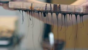 Кондитер льет поливу темного шоколада толстую из формы сток-видео