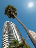 кондоминиумы зданий самомоднейшие Стоковое Изображение RF