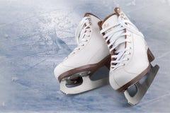 Конек льда Стоковые Фотографии RF