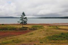 Конематка вспомогательное Vacoas резервуара Маврикий Стоковая Фотография
