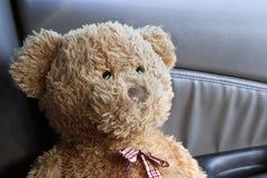 Конец Брайна плюшевого медвежонка вверх по сиротливому чувству в моем автомобиле Стоковые Фото