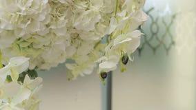 Конец-вверх белых орхидей в украшении свадьбы акции видеоматериалы