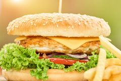 Конец-вверх бургера фаст-фуда содержа мясо покрыл с сыром, томатами, салатом и луком Стоковые Фото