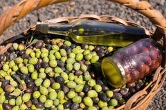 Конец-вверх бутылки оливок, опарника и оливкового масла в корзине Стоковые Фотографии RF