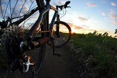 Конец-вверх велосипеда на следе на заходе солнца Стоковые Изображения