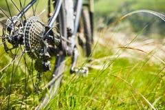Конец-вверх велосипеда катит внутри траву лета зеленую в поле Стоковое Фото
