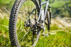 Конец-вверх велосипеда катит внутри траву лета зеленую в поле Стоковая Фотография