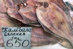 Конец-вверх высушил посоленные камбалообразные на счетчике на рынке морепродуктов Стоковое Изображение RF