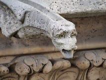 Конец-вверх горгульи на соборе Нотр-Дам, Париже Стоковые Фотографии RF