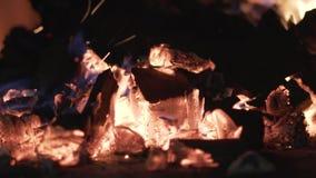 Конец-вверх гореть черные угли E Гореть вне небольшие пламена на углях для барбекю в природе Горячее и теплое горение сток-видео