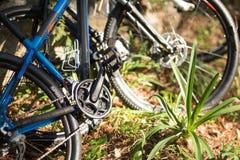 Конец-вверх горного велосипеда в лесе Стоковая Фотография RF