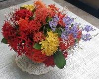 Конец-вверх жасмина красочного Ixora/западного индейца цветет букет в керамической вазе с космосом экземпляра стоковое фото rf