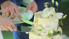 Конец-вверх жениха и невеста режа их свадебный пирог видеоматериал