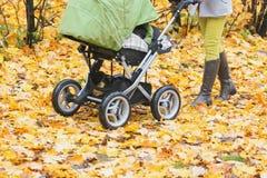 Конец-вверх женщины идя в парк осени с прогулочной коляской Стоковые Изображения