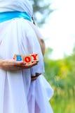 Конец-вверх живота беременной женщины держа кубики мальчика вне стоковое изображение rf