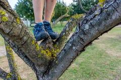 Конец-вверх идя ног ` s ребенка на дереве ботинки в внешнем поступке стоковые изображения rf