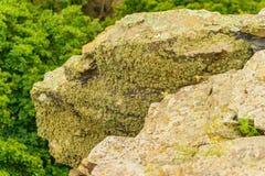 Конец-вверх камня покрытый лишайником Стоковые Фотографии RF