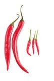 Конец-вверх кашевара Chili различный Стоковые Изображения