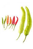 Конец-вверх кашевара Chili различный Стоковые Фото